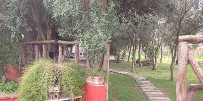bed-and-breakfast-olmedo-algheroE6B17AD6-08B2-6332-0240-9E8FE9EDAFDD.jpg